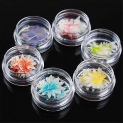 2. Vegyes szárított virágok köröm művészet DIY üveg palack dekoráció virág manikűr dekoráció