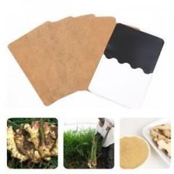 10Pcs méregtelenítő test lábtalp javítás Herbal Weight loss Ginger Extract egészségügyi ellátás