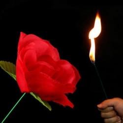 New Stage Közelről Magic Trick Torch Rose a tűz trükkök Láng megjelenő virág