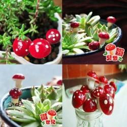20Pcs Vörös hab Gomba Miniatűr kézműves növényi tündérfűke babaház dekoráció kerti dísz DIY új