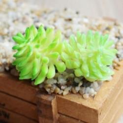 1 * Szimuláció Mini műanyag miniatűr pozsgás növények Otthoni kert Iroda dekoráció