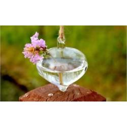 Lámpás alakú Kreatív függő üveg virág ültetvény váza terrárium konténer kerti lakberendezés