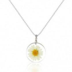 fehér Női divat átlátszó gyanta szárított virág Daisy medál nyaklánc Boho ékszerek