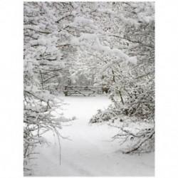 2db 220x150cm-es Téli havas táj háttér stúdió fotózáshoz - T1X8