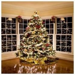 210x150cm-es Ünnepi karácsonyfa háttér stúdió fotózáshoz - G7J9