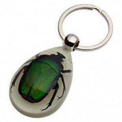 Zöld borító - Világos-sötétben valódi rovar kulcstartó W7Q3