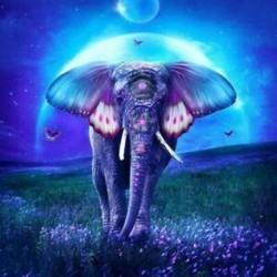 5D Diy gyémántfestmény, színes elefánt, teljes kerek gyémánt hímzés Cro S2K8