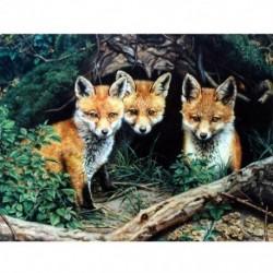 Gyémántfestés állati képek strasszos gyémánt hímzéssel eladó Fox D2M5