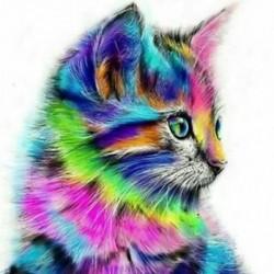 Keret nélküli állatmacska képek Festmény DIY digitális olajfestmény, vászon E W5M2
