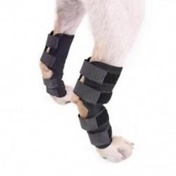 A kutya hátsó lábtartója, a kutya kutya hátsó lábcsípőcsomagolása I2N2-ként védi a sebeket