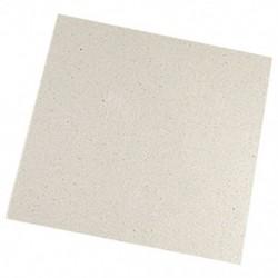 1X (2x mikrohullámú mikrohullámok 11 x 12 cm csere csillám csillámkorong K1P1)