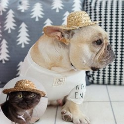 Kisállat kellékek Kisállat kutyák Szalmakalap Macska Naposkalap Strand party szalmakalapok Kutyák Hawaii stílusú kalap