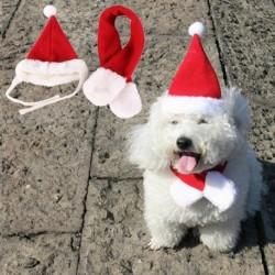 NAGY - 2 darabos, kedvtelésből tartott macskakutyás Mikulás sapka és sál karácsony ünnepi jelmez