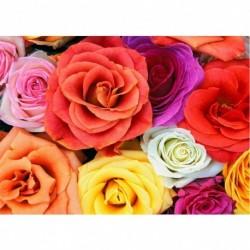 17 * Bunte Rose 40 * 30cm - Teljes körű fúró 5D strasszos kép barkácsolás virágok gyémántfestés
