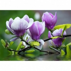 26 * Blume - c1035 30 * 40 cm - Teljes körű fúró 5D strasszos kép barkácsolás virágok gyémántfestés
