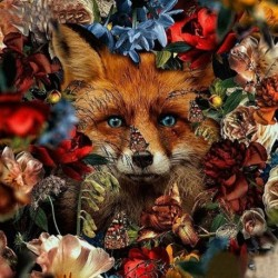 Nincs szín - Teljes kerek fúró strasszos kép 5D barkácsvirágok Farkas gyémántfestés