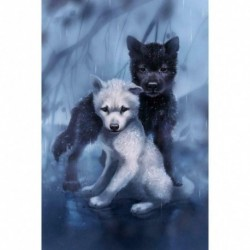 Wolf04 - 5D barkács teljes fúrással gyémántfestés farkaskeresztes hímzés mozaik készlet